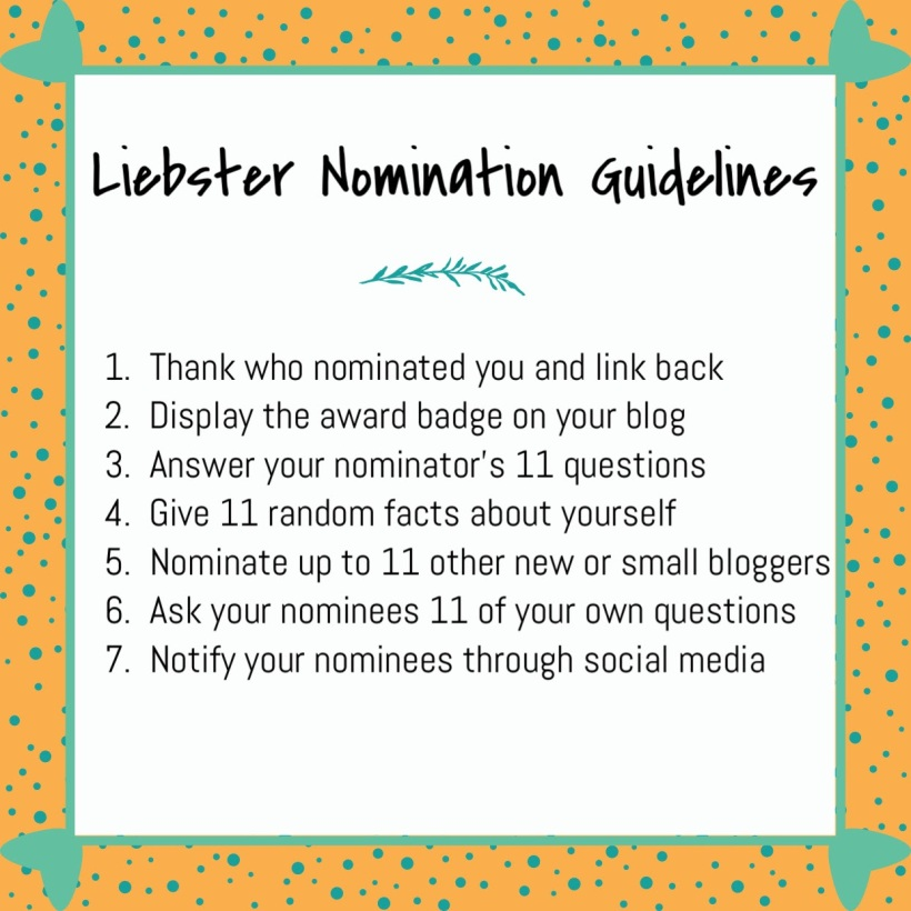 Leibster Nominee, New Blogger
